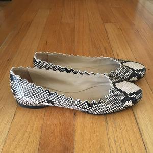Chloe Women's Scalloped Snakeskin Flats